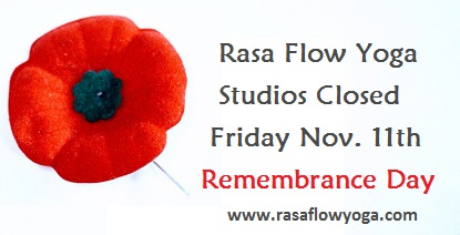 Poppy for remembrance day story - Studios Closed Fri, Nov. 11th.